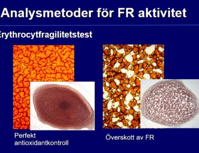 Torrblodsanalys oxidativ stress